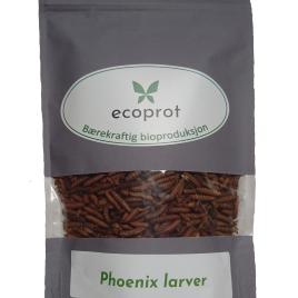 Ecoprot Phoenix larver – Frysetørket